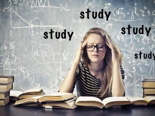 DIVALI Experience voor studenten 45 min. €49,-